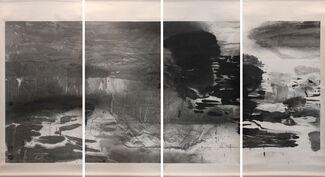 JIAN-JUN ZHANG: Nature, installation view