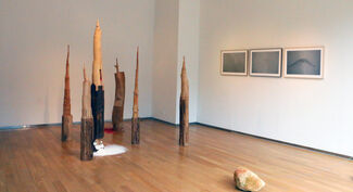 A Splendid Web from Heaven to Earth, installation view