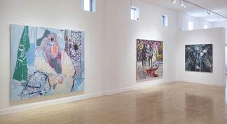Taha Heydari: Running Rabbits, installation view