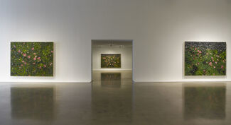 Julian Schnabel: New Plate Paintings, installation view