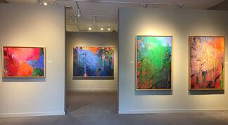 Brian Rutenberg: Thunderhead, installation view