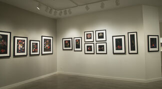 Nancy Becker: Translations and Unexplored Space, installation view
