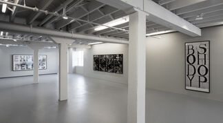 Shannon Ebner: A Public Character, installation view