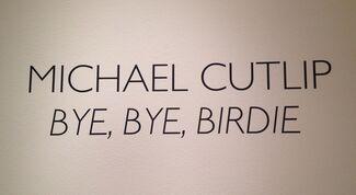 BYE, BYE, BIRDIE, installation view