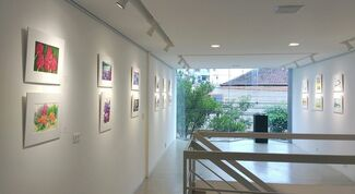 ABA 33 Anos, installation view
