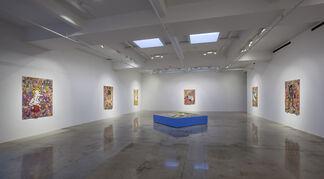 Camilo Restrepo: Tight Rope, installation view
