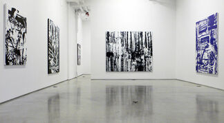 """David Ratcliff - """"Cosmetic Surgery"""", installation view"""