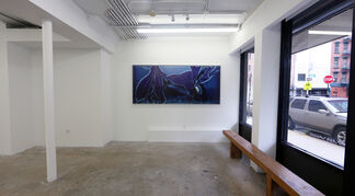 Knowledge Comes with Death's Release : Beate Geissler/Oliver Sann, installation view