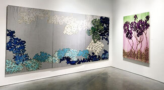 Planetary Visions: Mira Lehr from Spaceship Earth, installation view