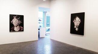 "Richard Butler ""naturalhistory"", installation view"