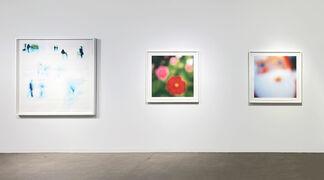 John Huggins, Selected Works, installation view