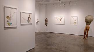 Marilla Palmer, installation view