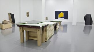 Wang Jianwei: ...the event matured, accomplished in sight of all non-existent human outcomes., installation view