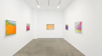Wolf Kahn, installation view