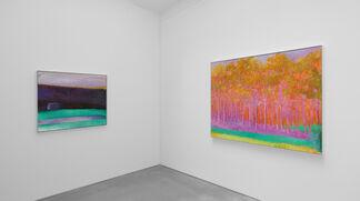 Wolf Kahn: Six Decades, installation view