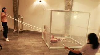 Social Phobia, installation view