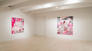 How and Nosm: A Different Language, installation view