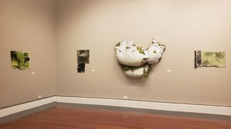 Constructed Comfort, installation view