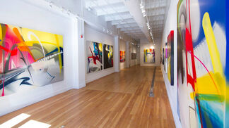 "Adrian Falkner / Smash137: ""Disclosure"", installation view"