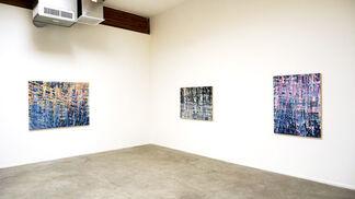 Sebastien Leon   The Kingdom of Waves, installation view