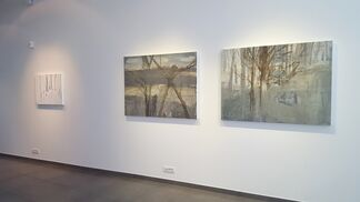 Tjibbe Hooghiemstra, solo show, installation view