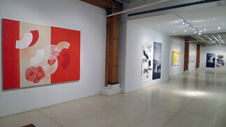 Denise Green: Paintings, Drawings, Photographs, installation view