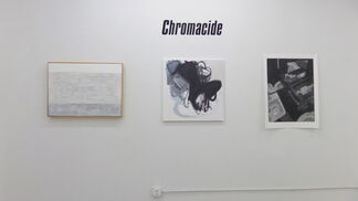 Chromacide: An Exhibition in Grayscale, installation view