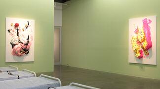 SUGATARIUM, installation view