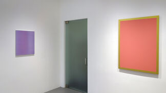 RADICAL: Monochrome Paintings from the Goodman Duffy Collection, installation view