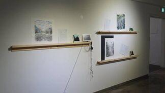 A Walk in the Wood 3 'Rhythm & Hues', installation view