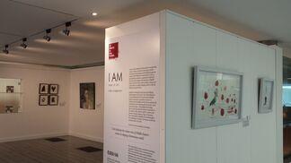 I AM, installation view