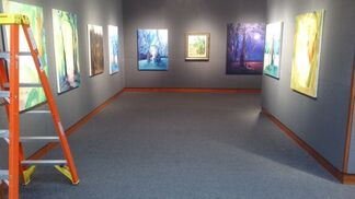 The Prince of Banana Trees, installation view