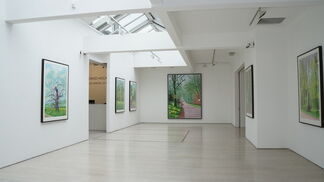 David Hockney: The Arrival of Spring, installation view