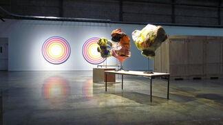 Science of dreams, installation view