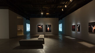 One Is All, All Is One - Jiang Zhi Solo Exhibition, installation view