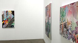 "Carlson Hatton ""Ataxia"", installation view"