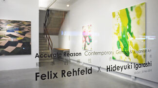Accurate Reasons- Contemporary German & Japanese Art, installation view