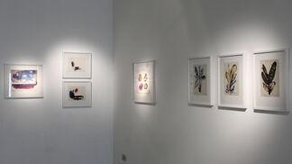 Diana Chalukian, Antología sobre papel, Brasil decada del 60, installation view