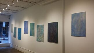 Mother Nature on the Run, installation view