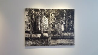 Tom Liekens 'The Land that Time Forgot', installation view