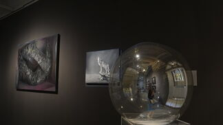 Field of creation, installation view