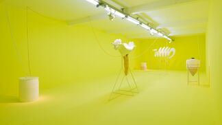 Echoes, installation view