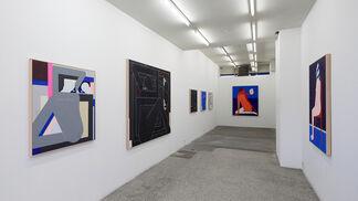 Misanthrope - Richard Colman, installation view