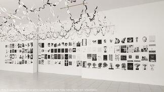 Art & Language, installation view