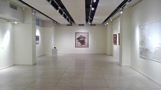 Conflicting Values, installation view