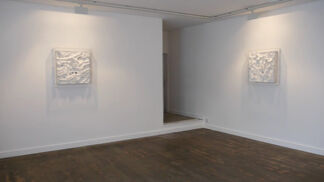 Richard Nott 'Ecdysis', installation view