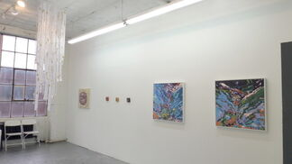 Unique to the Nature, installation view