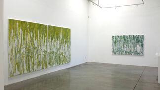 "Audra Weaser ""Immersion"", installation view"
