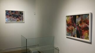 Fractal Realities, installation view