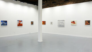 Alex Couwenberg: Swell, installation view